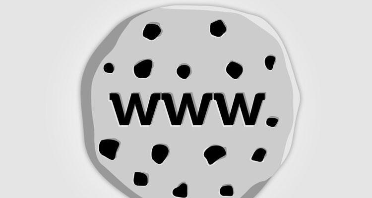 how to delete cookies windows 7 google chrome