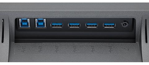 Conexiones NEC MultiSync EX341R