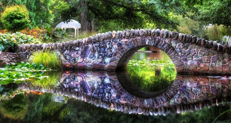 Fondos de pantalla inspirados en la naturaleza
