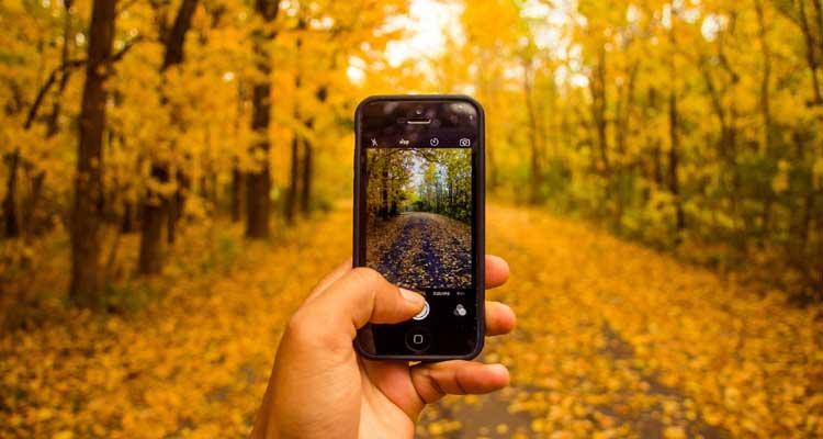 Fotos borradas otoño