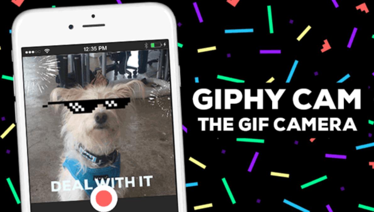 Interfaz de Giphy CAM