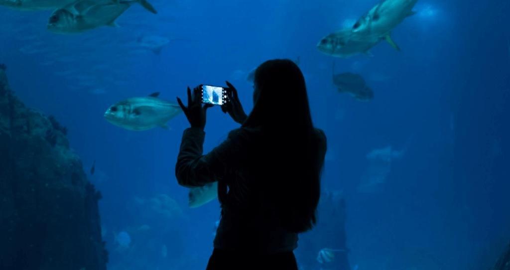 Fotos interior con el Huawei P20 Pro