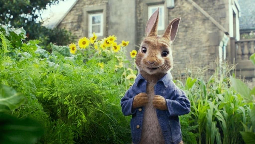 Escena de Peter Rabbit
