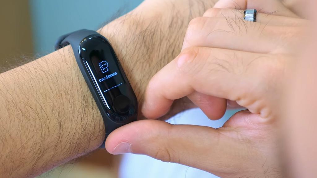 Panel integrado en la Xiaomi Mi Band 3