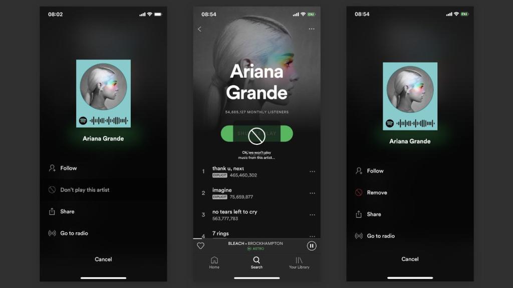 Bloquear artistas de Spotify