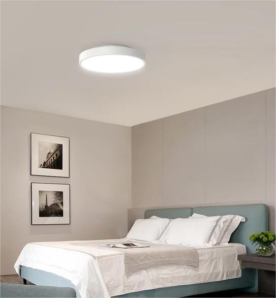 Xiaomi Smart Ceiling Light