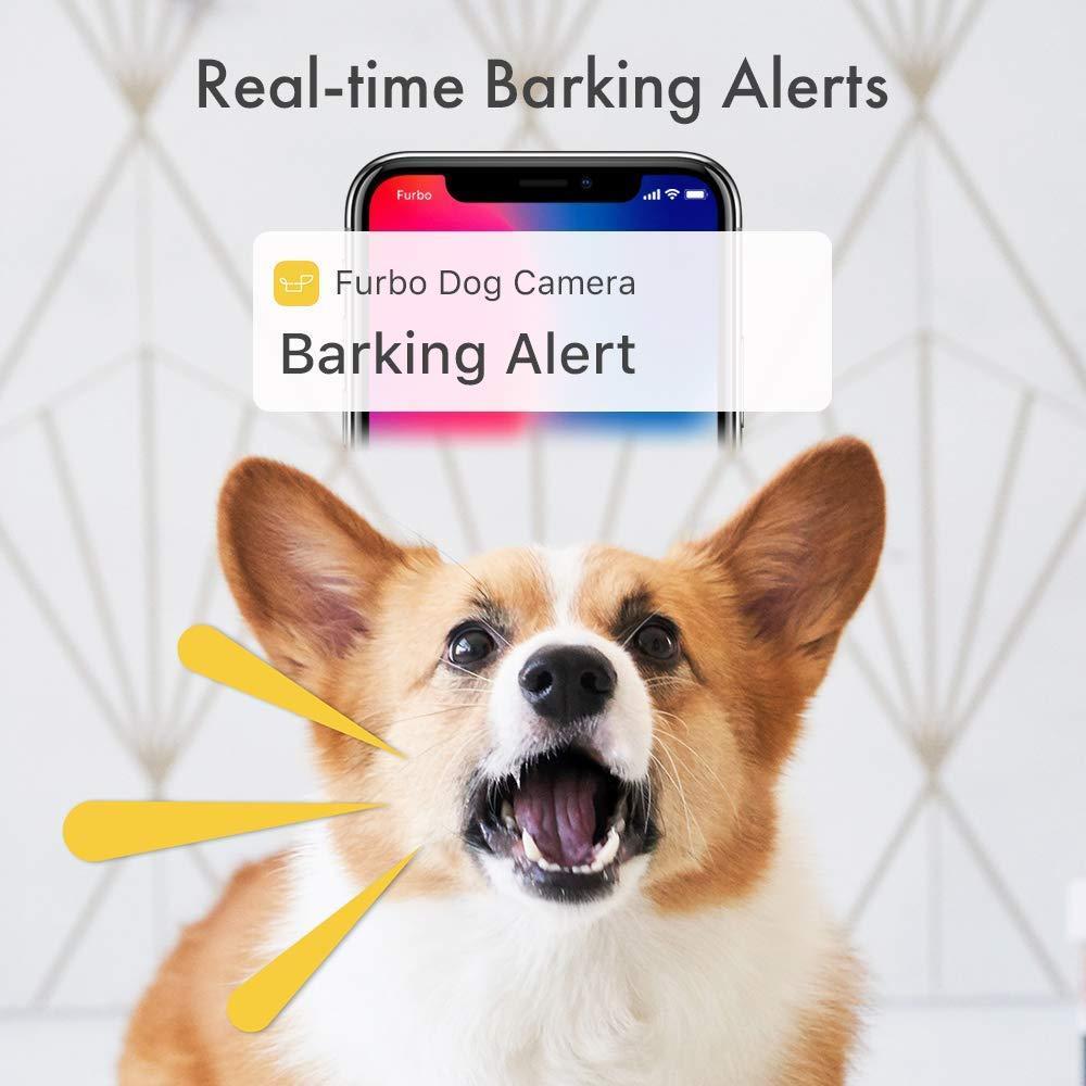 Alerta de ladridos en cámara para mascotas