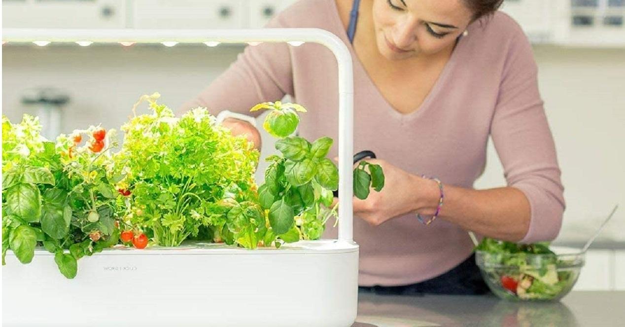 Accesorios baratos para hacer tu cocina inteligente