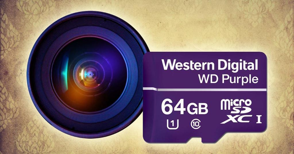 Western Digital WD Purple SC QD312