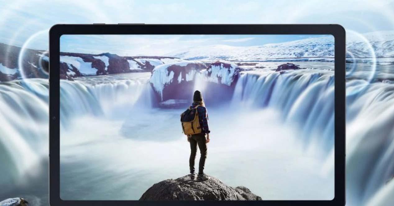 Pantalla del tablet Samsung Galaxy Tab S6 Lite