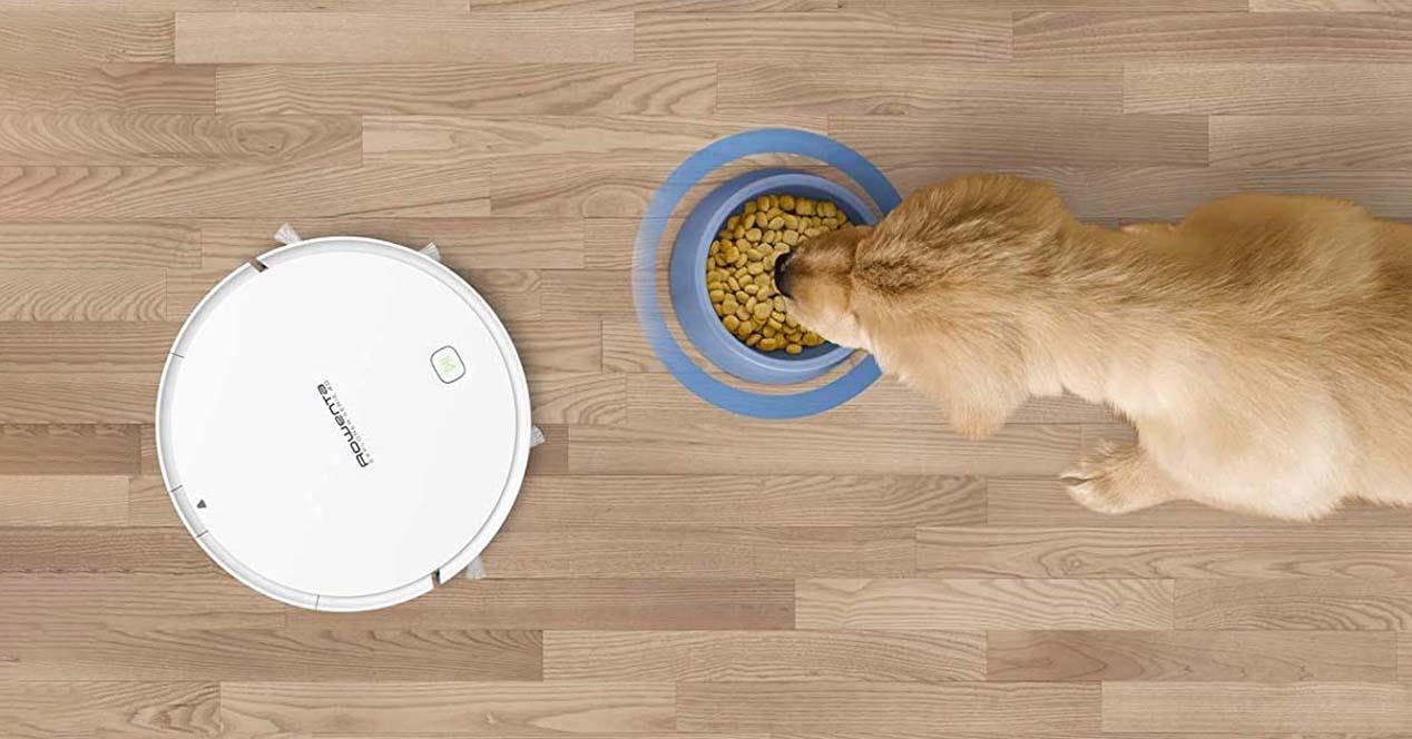 Robots aspiradores para el pelo de las mascotas
