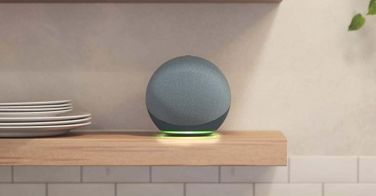 Amazon Echo en una estantería